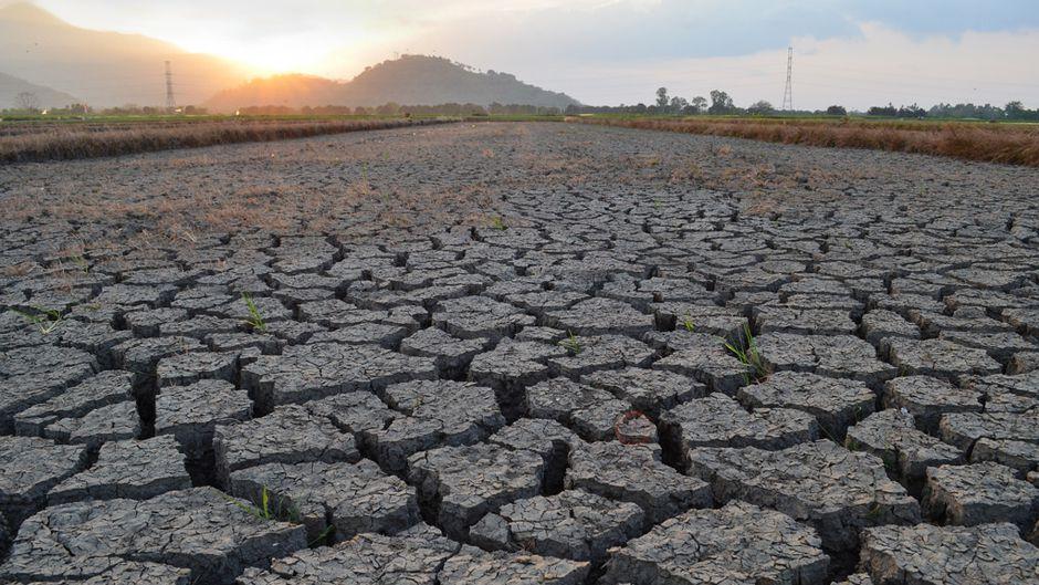 Gambar 1. Desertifikasi