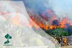 Karhutla : Mengapa Api Tak Kunjung Padam