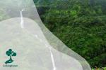 Pelestarian Hutan Vs Sustainable Development Goals 6