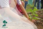 Penghargaan Lingkungan Hidup dari Pemerintah Indonesia