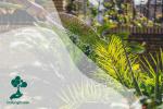 Hari Konservasi Alam Nasional: Mulailah dengan Langkah Kecil dari Rumah untuk Mengkonservasi Alam