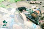 Ancaman dari Mikroplastik
