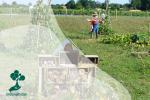 Mengenal Permakultur, Sistem Pertanian yang Berkelanjutan