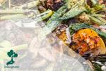 Ada Dampak Lingkungan Serius Dibalik Limbah Makanan