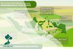 Mengenal Kebijakan Pemerintah Jadikan Hutan Sebagai Kawasan Food Estate