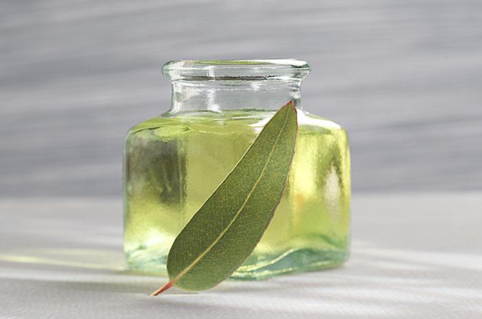 Gambar 3. Minyak Kayu Putih. Sumber: halodoc.com