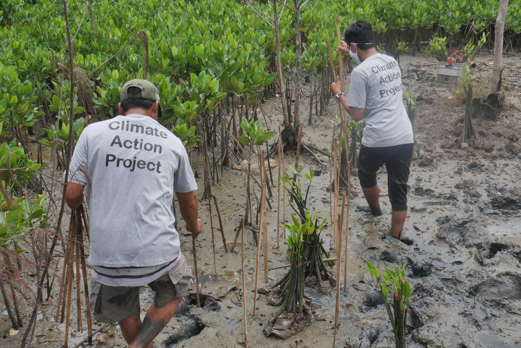 Pemasangan Ajir © Dokumentasi Tim LindungiHutan