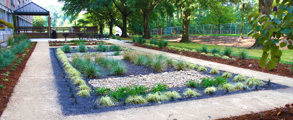 Gambar 1. Rain Garden. Sumber: https://sustainability.ncsu.edu/blog/changeyourstate/how-to-build-a-rain-garden/