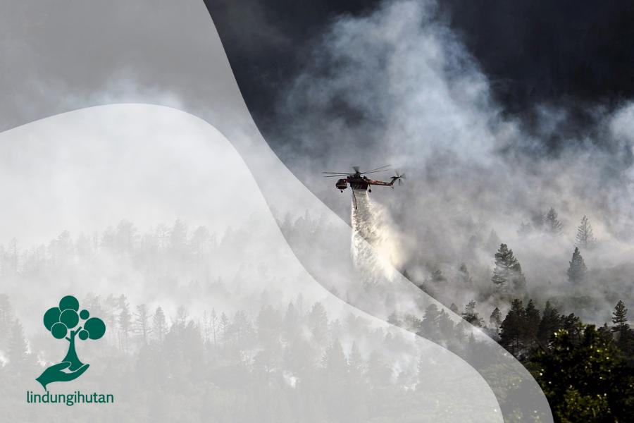 Kerjasama Multilateral Untuk Penanganan Kebakaran Hutan