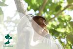 Mengenal Konservasi Alam di Hari Konservasi Alam Nasional