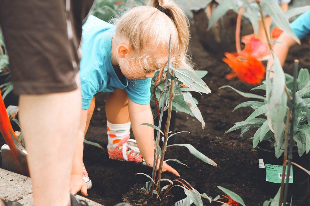 Gambar 1. Manfaat Berkebun. Sumber: Sumber: unsplash.com
