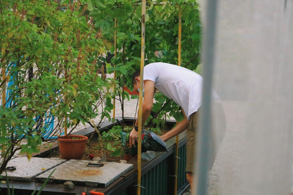 Gambar 3. Kebun di Rumah. Sumber: Sumber: unsplash.com
