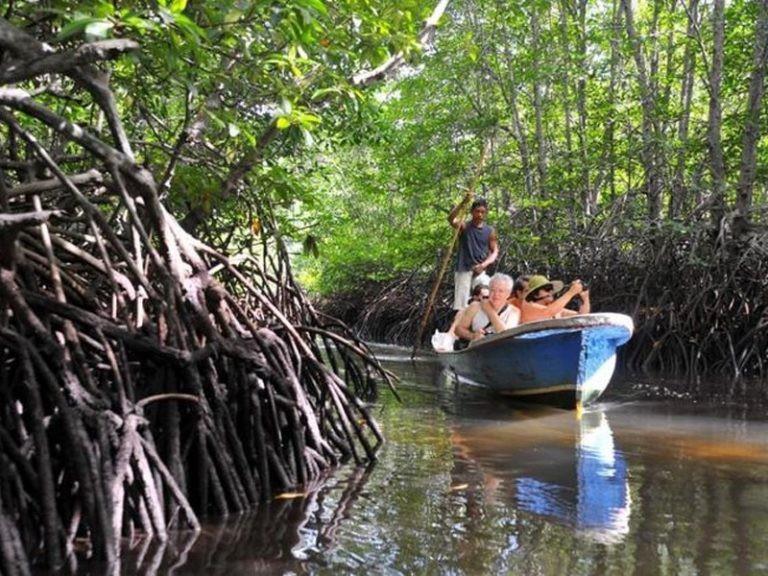 Menyusuri Hutan Mangrove dengan Perahu © travelingyuk.com