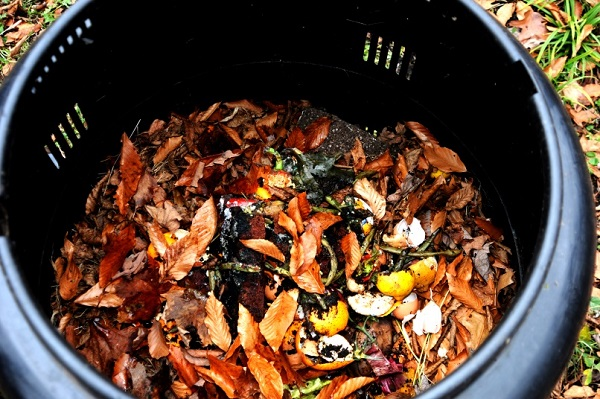 Gambar 4. Kompos- Daur Ulang Sampah Dapur