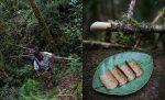Manfaat Tumbuhan Akway, Tumbuhan Endemik Papua