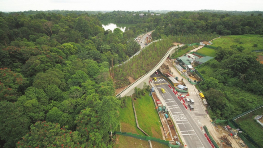 Gambar 1. Overpass for wildlife opens in Singapore