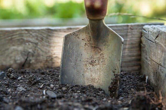 Gambar 1. Tanah sebagai tempat hidup makrofauna tanah