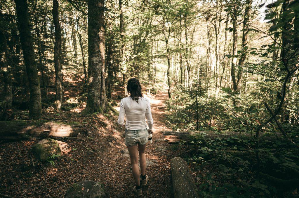 Gambar 1. Berjalan di Tengah Hutan adalah Aktivitas Forest Therapy