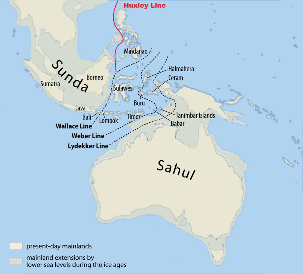 Gambar 2. Map of Sunda and Sahul © Wikipedia