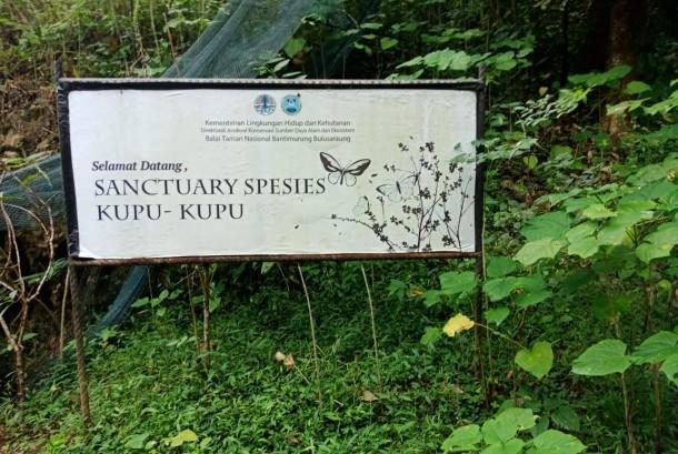 Gambar 3. Taman Nasional Bantimurung-Bulusaraung sebagai Rumah bagi Kupu-kupu