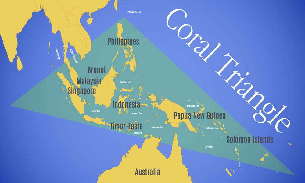 Gambar 3. Location map of the coral triangle ©Shutterstock.