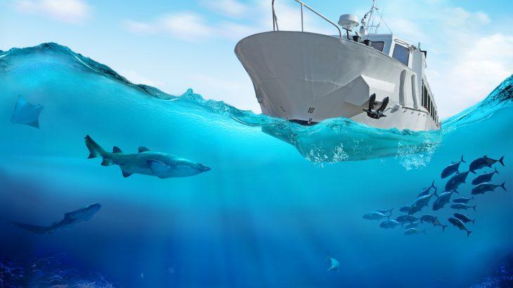 Gambar 4. Illustration of a boat on the sea. ©️ Earth.com