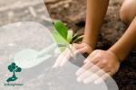 Kromojati: Tradisi Pernikahan yang Menghijaukan Lingkungan
