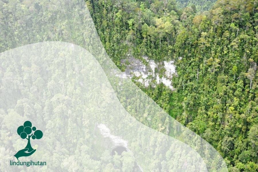 Taman Nasional Aketajawe Lolobata Di Halmahera, Maluku Utara