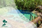 Danau Kaco: Surga yang Tersembunyi di Tengah Hutan