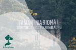 Taman Nasional Bantimurung Bulusaraung, Rumah Bagi Aneka Kupu-Kupu