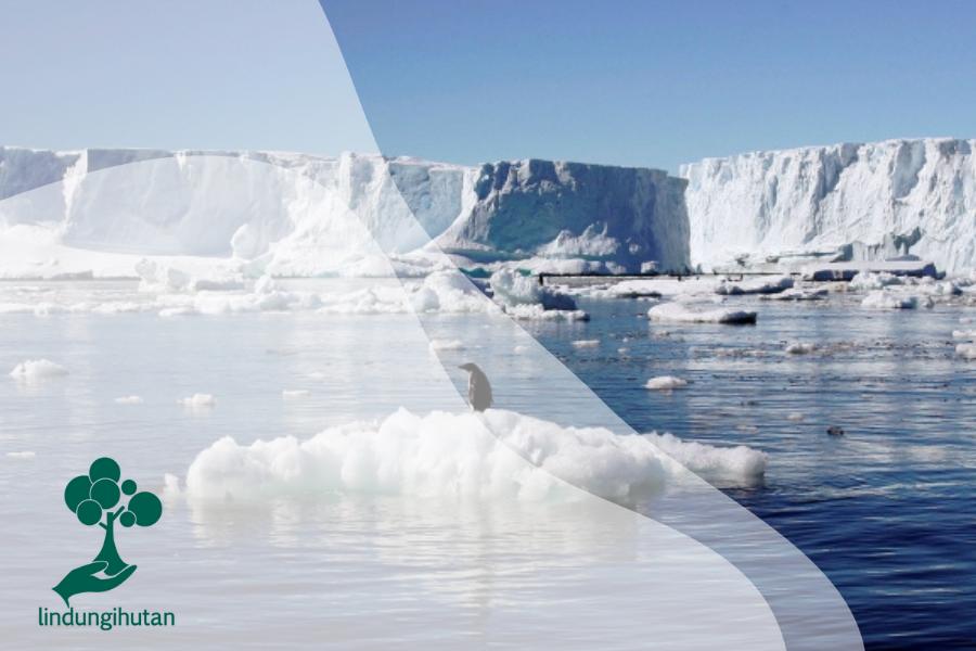 Pencairan Lapisan Es di Greenland dan Antartika