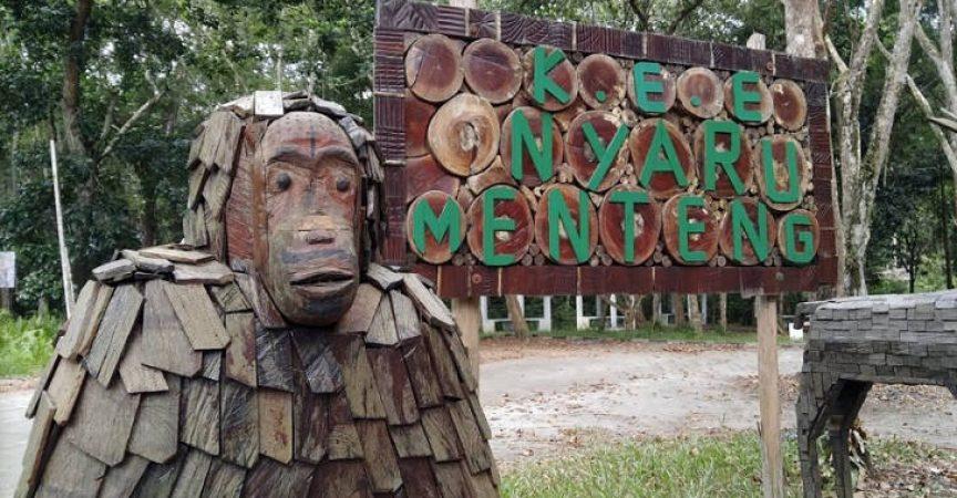[3] Borneo Nyaru Menteng (Photo credit: pagguci.com)