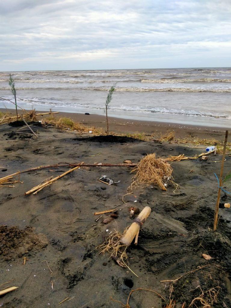 Pantai Karangmalang, Kendal © Dokumentasi Tim LindungiHutan