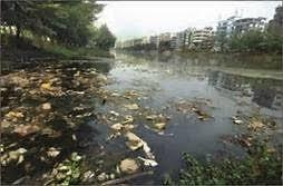 Gambar 2: Kontaminasi Logam di Perairan