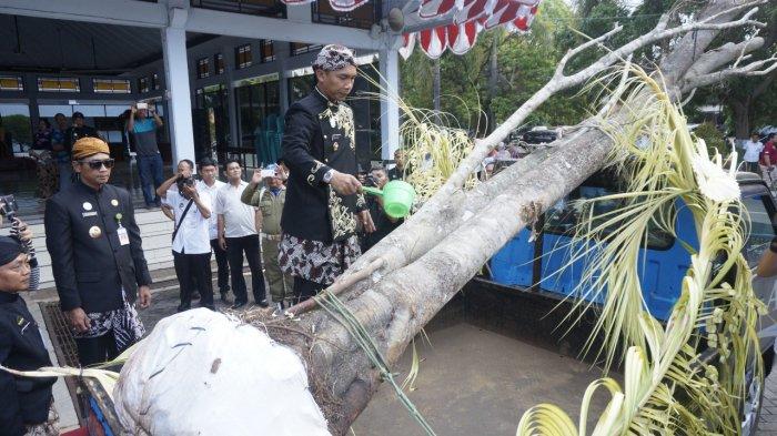Gambar 1 Prosesi Jamasan Pohon Waringin