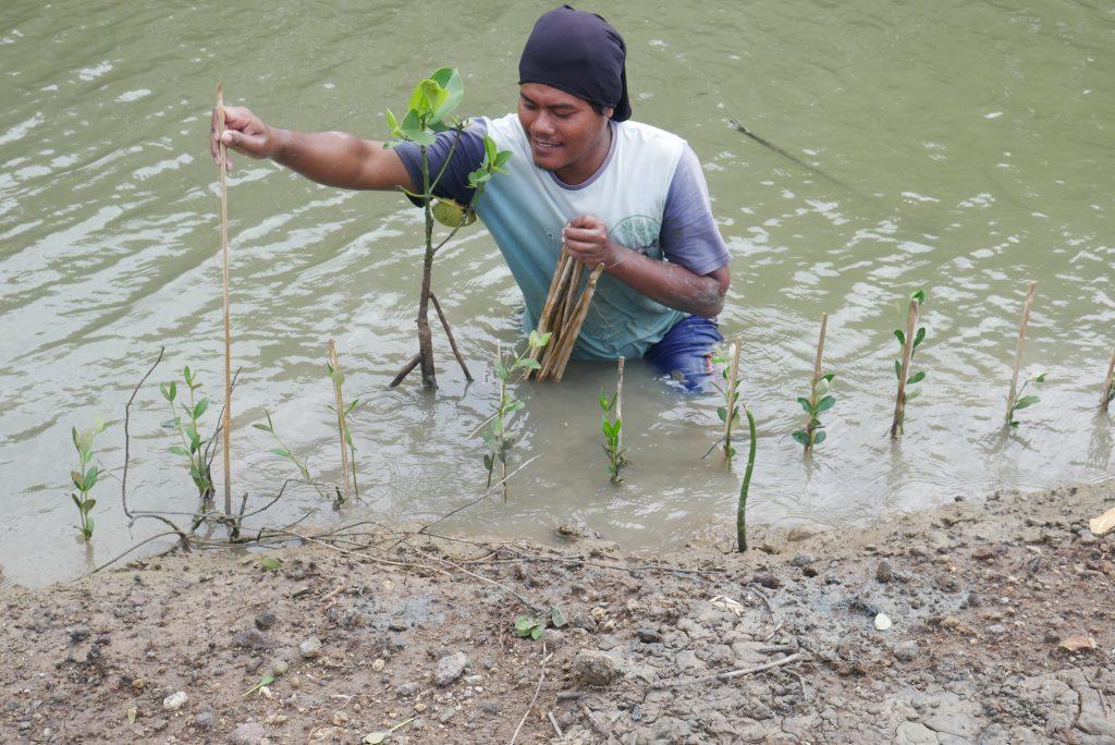 Relawan LindungiHutan Menanam Bibit Mangrove © Dokumentasi LindungiHutan