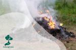 Stop Bakar Sampah Demi Hijaukan Bumi!
