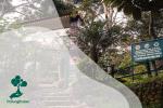 Taman Nasional Gunung Leuser: Rumah Bagi Berbagai Spesies Langka