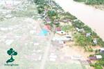 Penyebab Bencana Alam: Alih Fungsi Hutan Menjadi Kebun Sawit Dan Karet