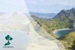 Inilah 10 Negara dengan Kekayaan Biodiversitas Terbesar