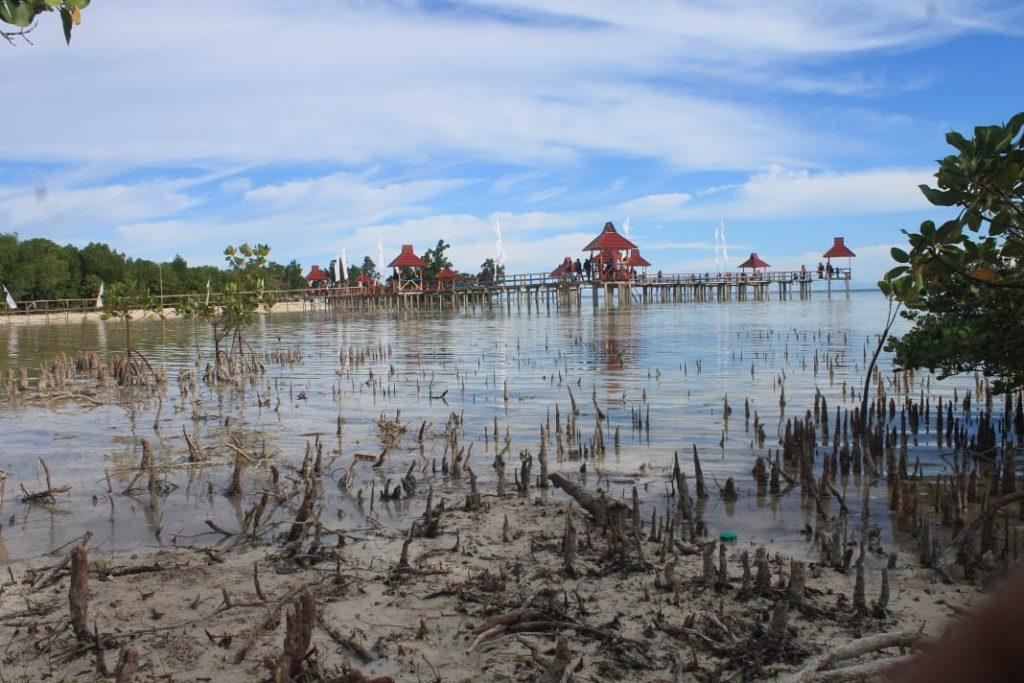 Hutan Mangrove yang Rusak © Franco Dengo/Beritagar.id