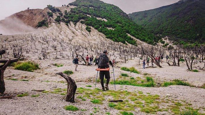 Jalur Pendakian Hutan Mati Papadayan © Tribun Travel