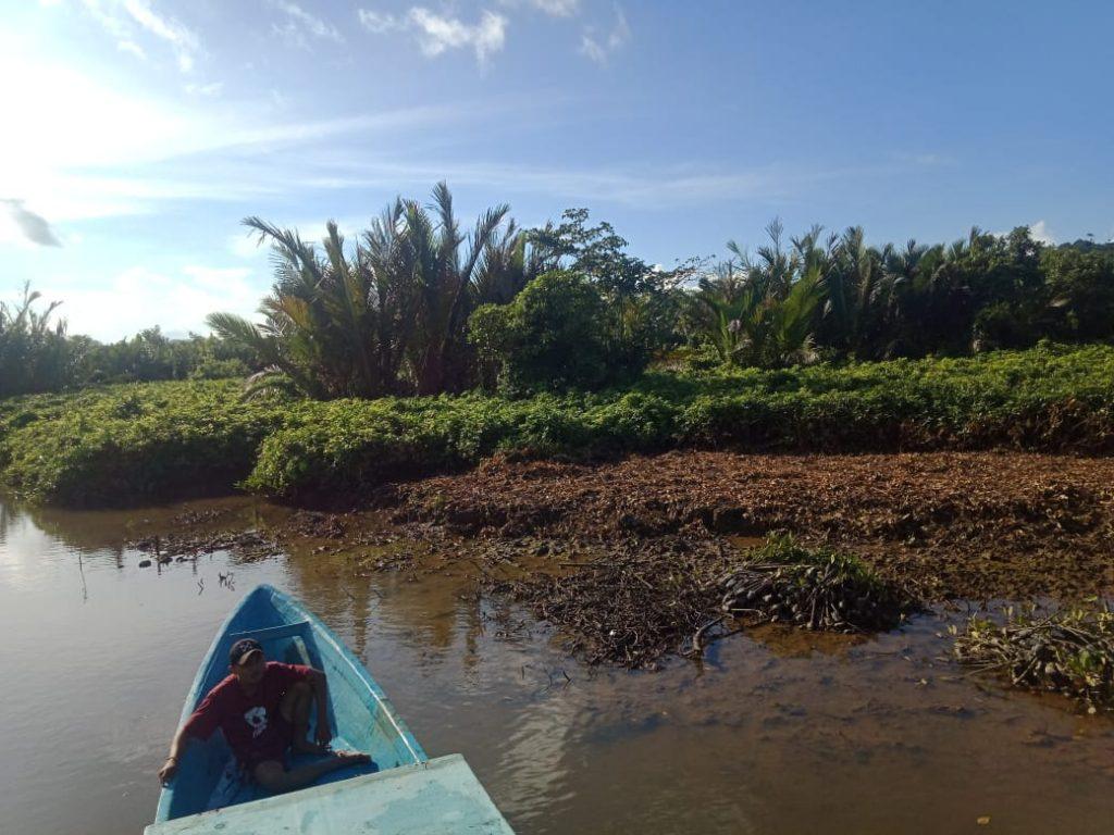 Lokasi Penanaman Sebelum Ditanami Bibit Mangrove © Dokumentasi LindungiHutan