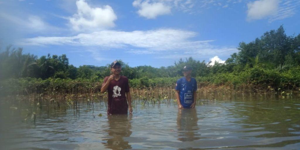 Proses Penanaman Mangrove bersama Patra Krida Wana Lestari © Dokumentasi LindungiHutan