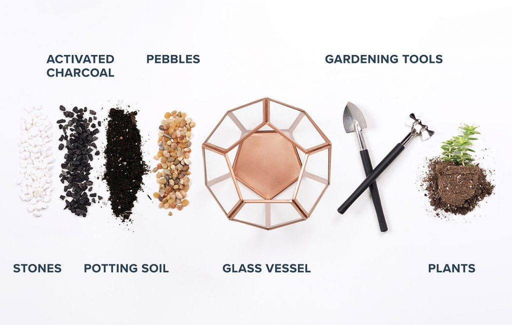 Alat dan bahan untuk membuat Terrarium