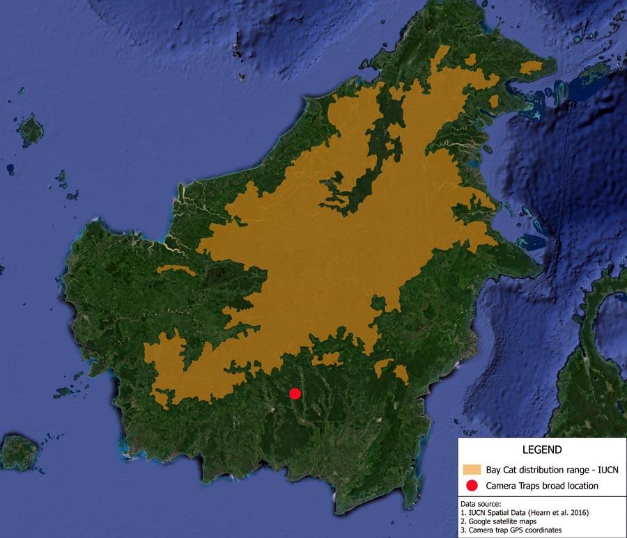 Peta Sebaran Kucing Merah © IUCN