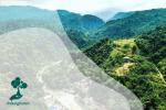 Bukit Lawang : Rumah Bagi Orangutan, Kelelawar, Hutan dan Gua
