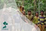 Peran Masyarakat Adat Dalam Pelestarian Hutan