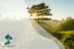 Meningkatkan Kesadaran Diri Terhadap Lingkungan