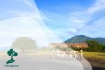 Taman Nasional Baluran, Sabana Di Utara Jawa